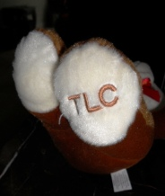 TLC Teddies